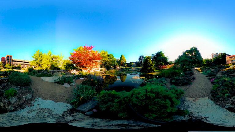Panorama of garden
